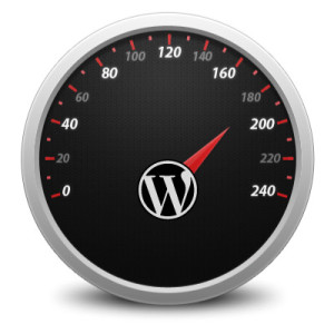 WordPress Schulung Nürnberg Pagespeed